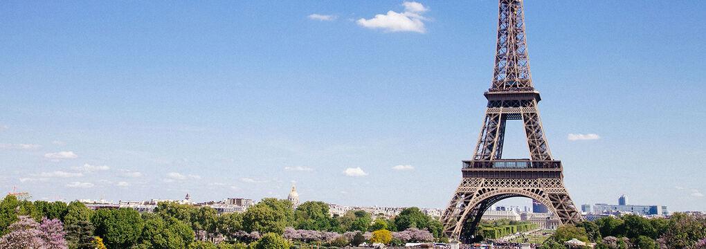 Eiffel Tower Web