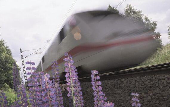 Hochgeschwindigkeit