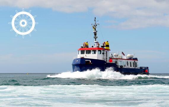 Aktionsbild Vessel